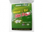 Adhesive, glue on mice and rodents  MJ8062
