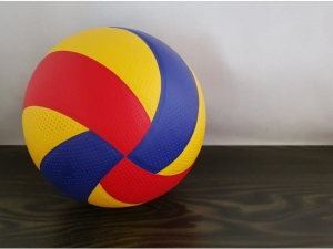 Panel volleyball ball MJ12377